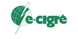 Test E-Cigre